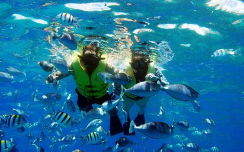 勒比度假别墅,美林温泉度假村,One On Marlin Spa Resort