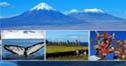 """""""智利旅游视频在线培训""""成功举办"""