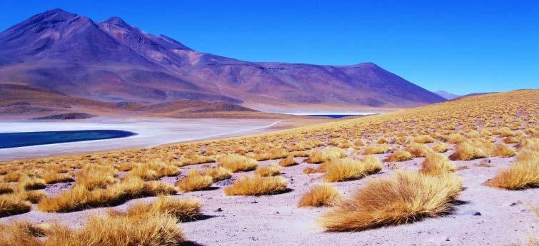 智利洗浴_南美之行-智利