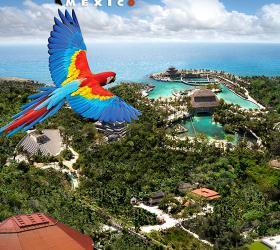 墨西哥最好玩的都在这!坎昆和卡门海滩十大地标