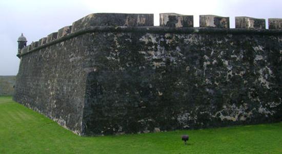 波多黎各的五个岛国胜地 荧光海湾最特别