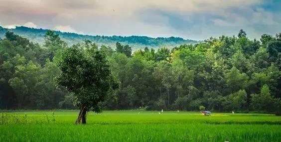 孟加拉国落地签