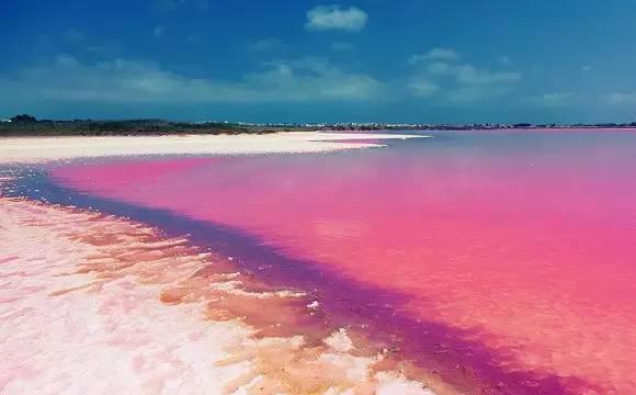 西班牙特拉维哈粉红湖