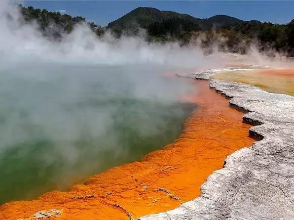 新西兰怀欧塔普地热公园