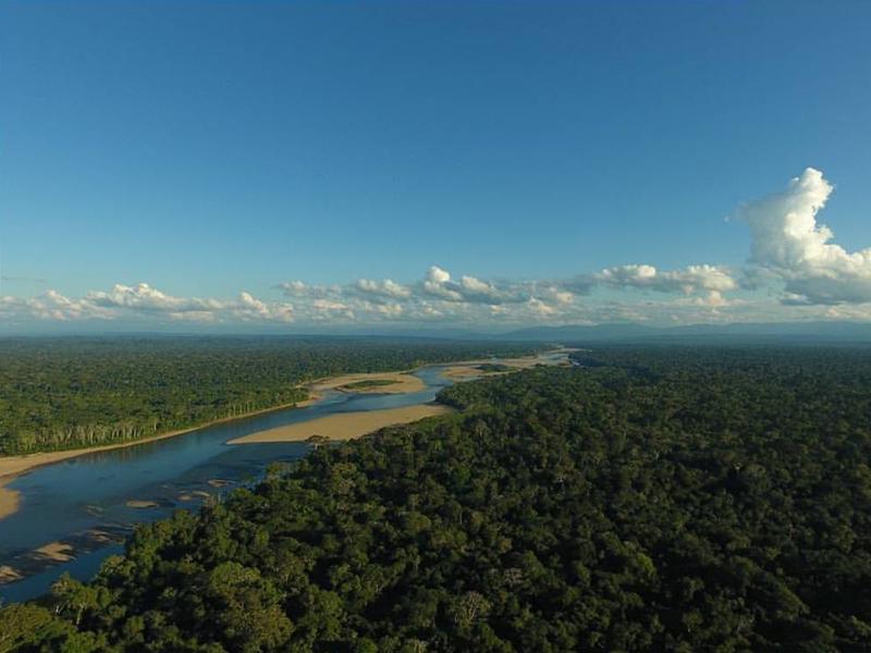 秘鲁亚马逊热带雨林