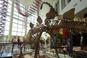 明尼苏达科学博物馆