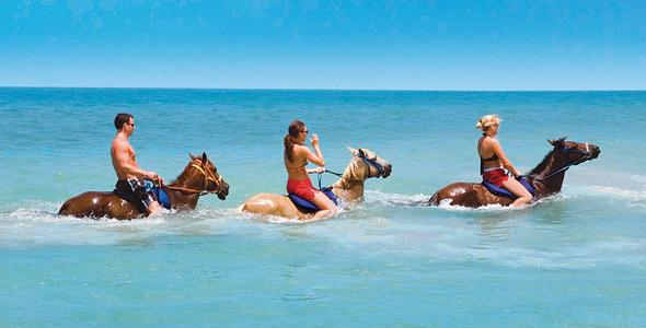 牙买加尼格瑞尔骑马游泳