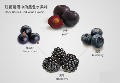 红葡萄酒中的黑色水果香