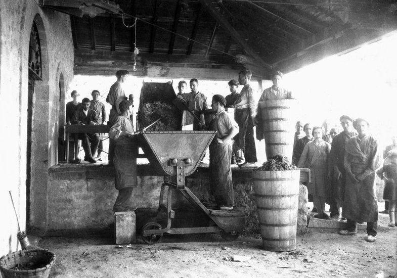 西班牙瑞格尔侯爵酒庄