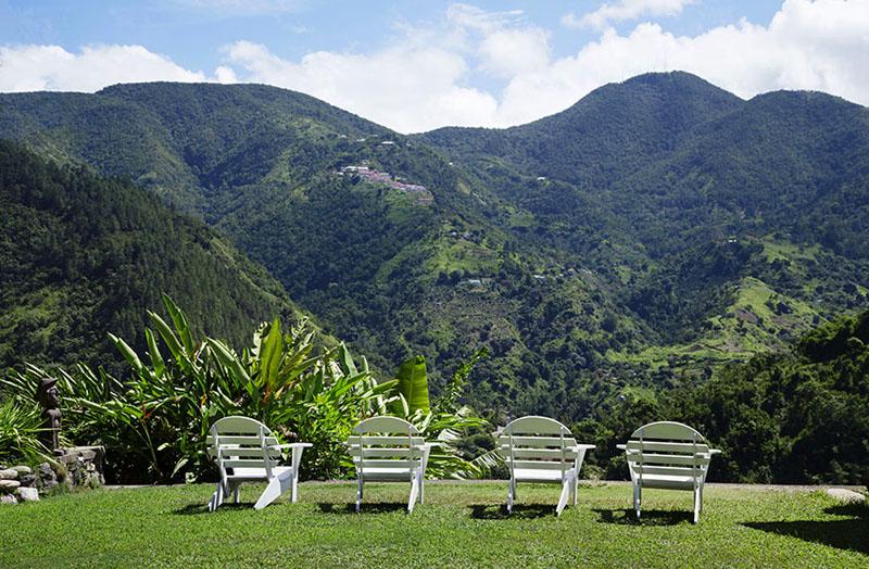 牙买加蓝山