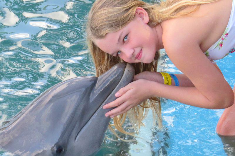 牙买加八条河海豚湾