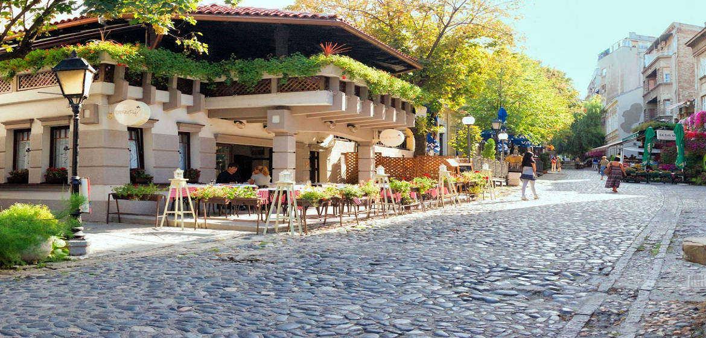 塞尔维亚斯加达尔里加城区