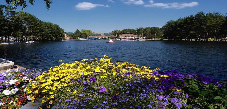塞尔维亚兹拉蒂博尔中心湖泊