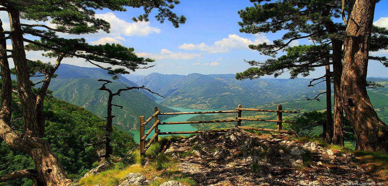 塞尔维亚塔拉国家公园