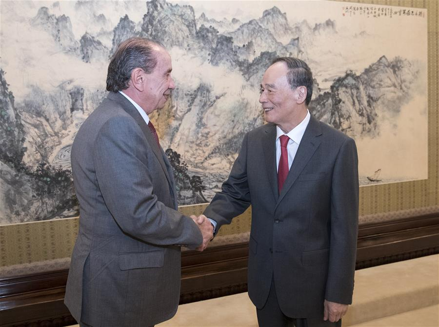 Chinese vice president meets Brazilian foreign minister