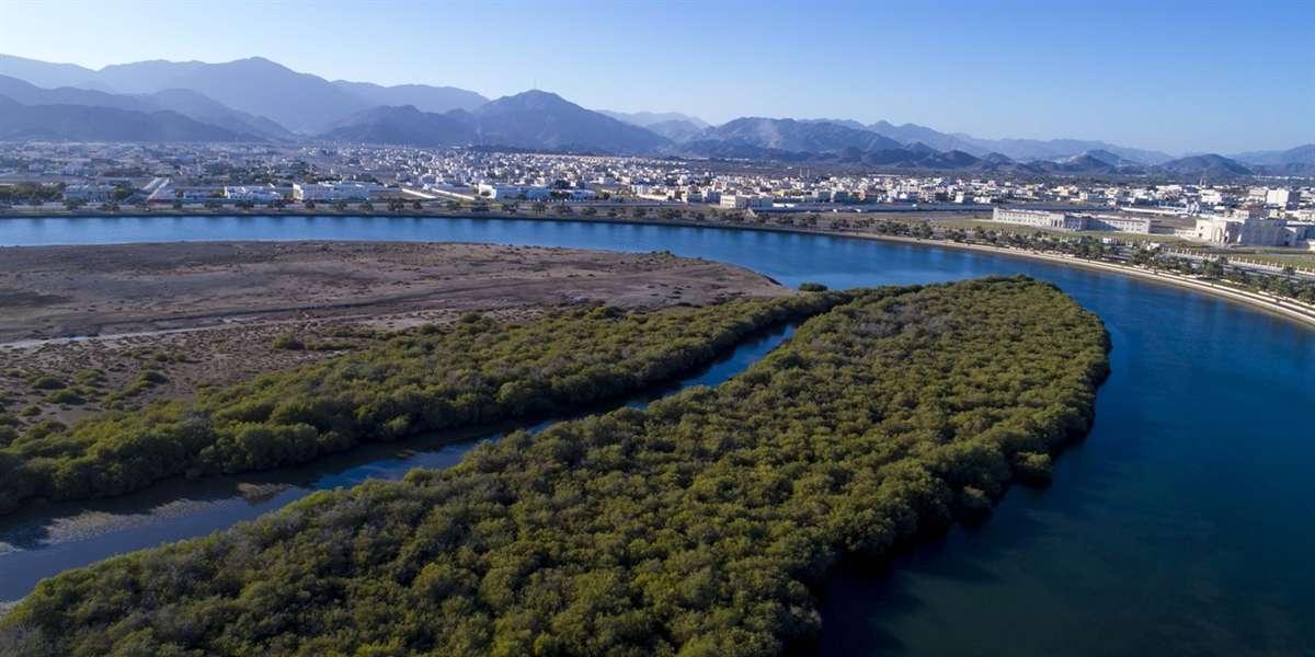 阿尔古伦自然保护区