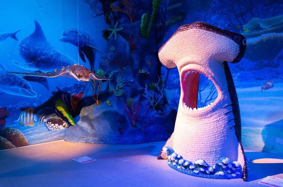 奇幻海底世界