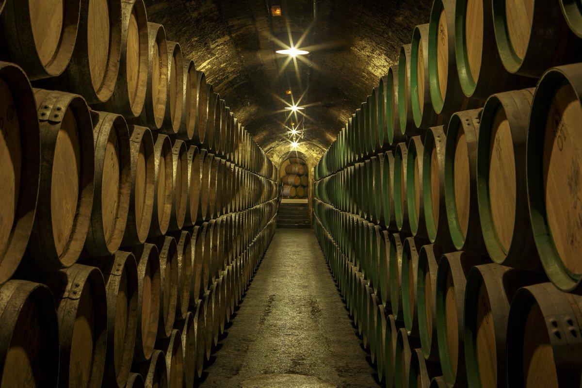 瑞格尔侯爵酒窖