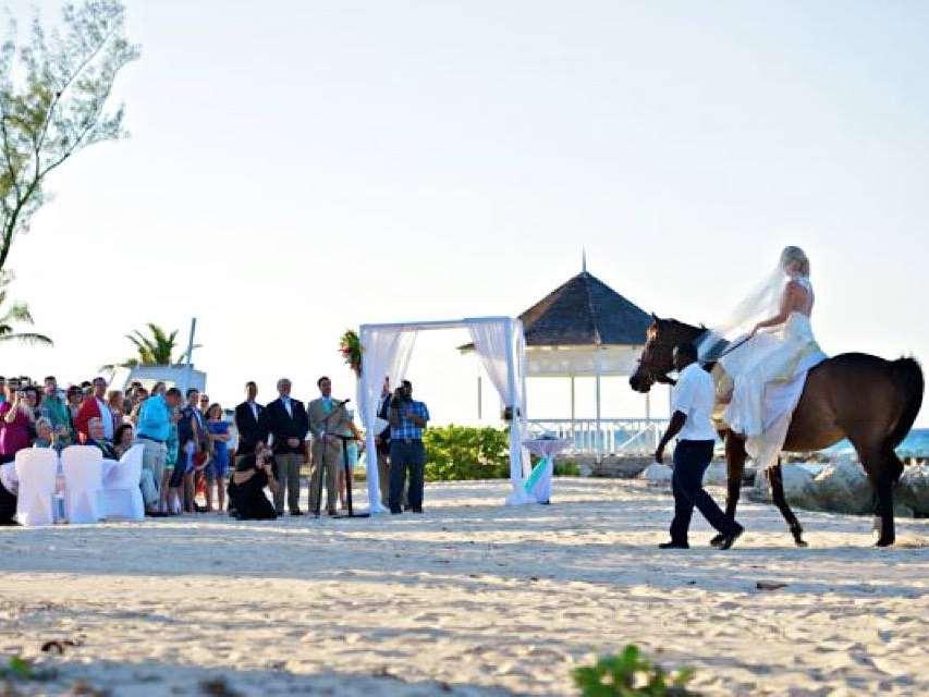 加勒比牙买加半月度假村婚礼