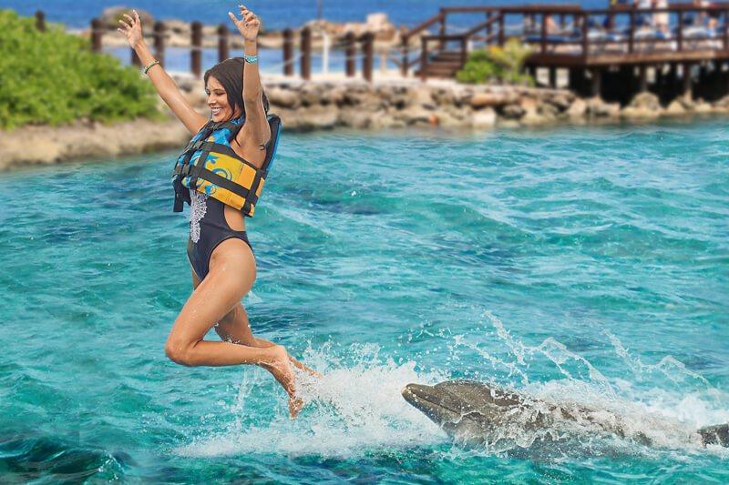 加勒比牙买加蒙特哥贝海豚湾