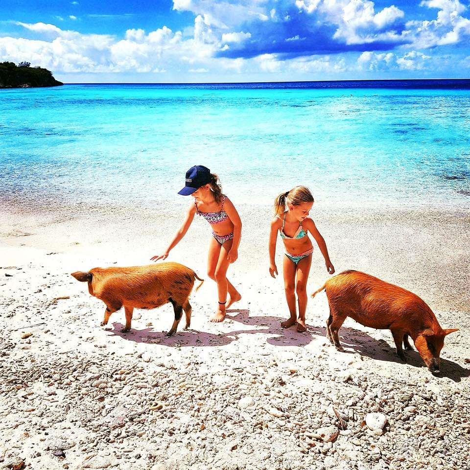 加勒比库拉索Playa Porto Mari海滩