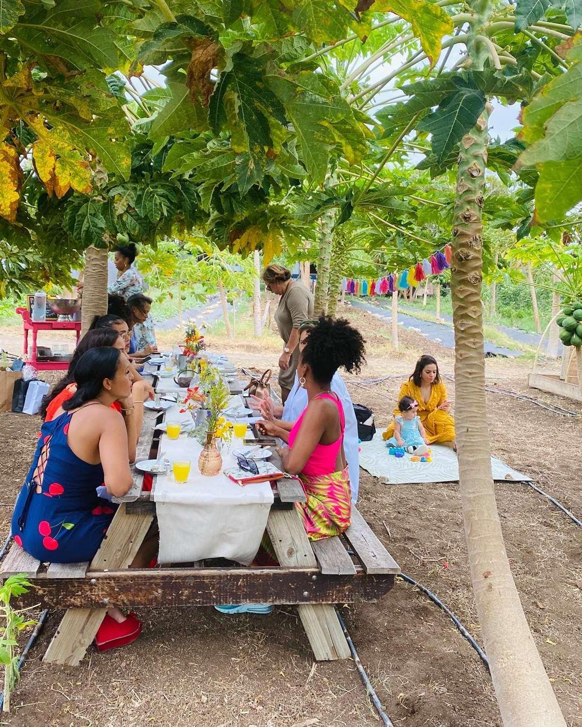 加勒比库拉索Hofi Cas Cora农场餐厅