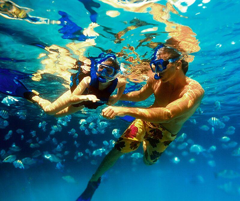 墨西哥坎昆谢哈公园浮潜