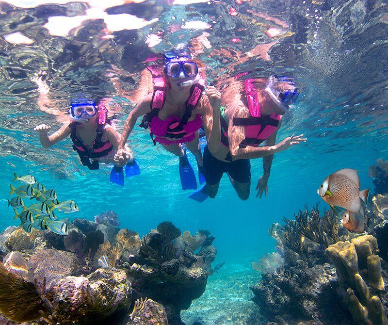 墨西哥坎昆西卡莱特公园浮潜