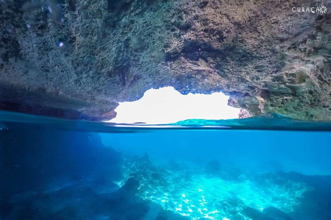 加勒比海库拉索岛蓝屋子洞潜