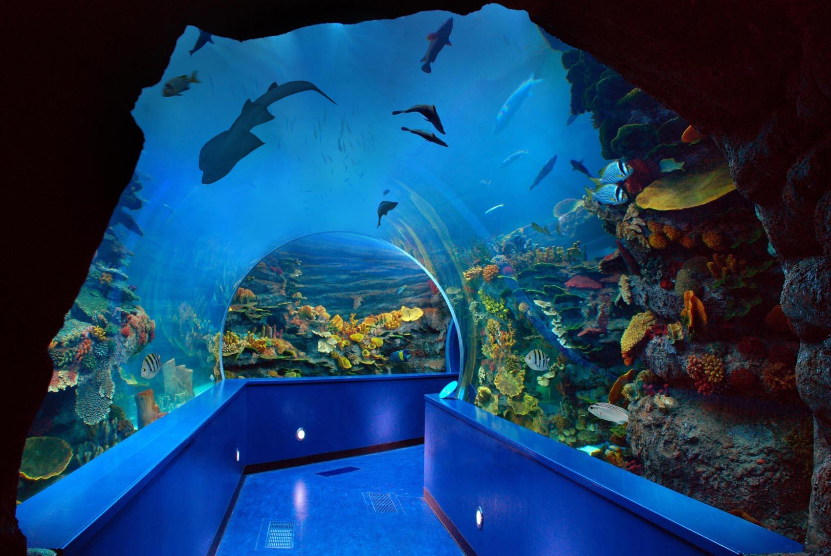 Sharjah Aquarium.jpg